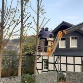 Fundamentierungsarbeiten für den Anbau des Geräteschuppens und Baumschnitt im Oktober 2019 - 11.jpg
